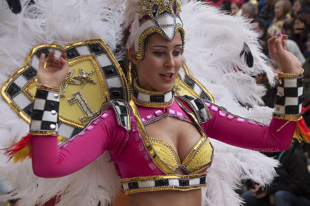 Resultado de imagem para É Carnaval de Estarreja na BTL